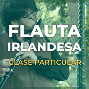 Clase Particular de Flauta Irlandesa