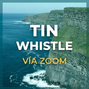 tin-whistle